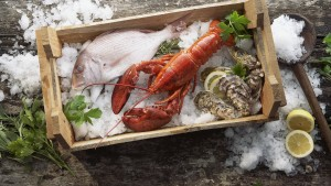 lobster_fish_mussels_ice_seafood_box_6334_1920x1080